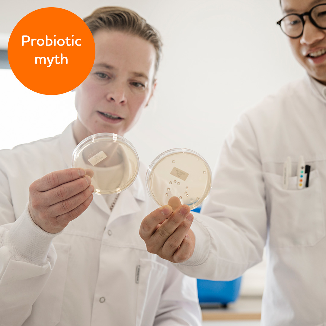 Probiotic myth: I get the same result no matter which probiotic supplement I take
